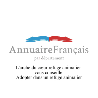 Adopter dans un refuge animalier>